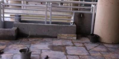 天鵝湖花園裝修貼磚效果圖